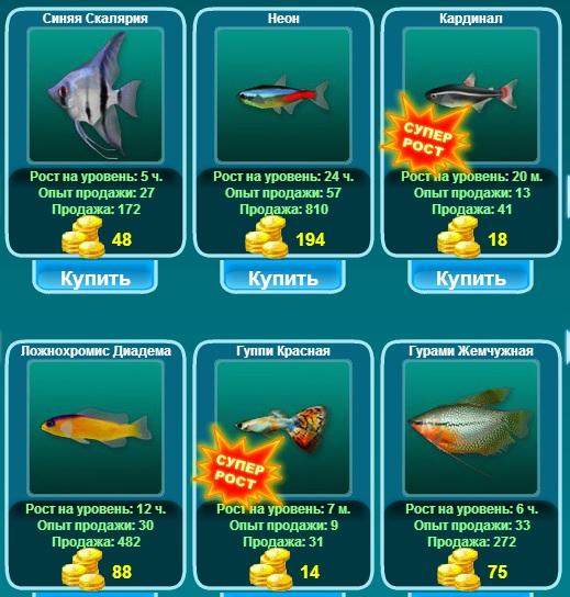 Магазин рыбок