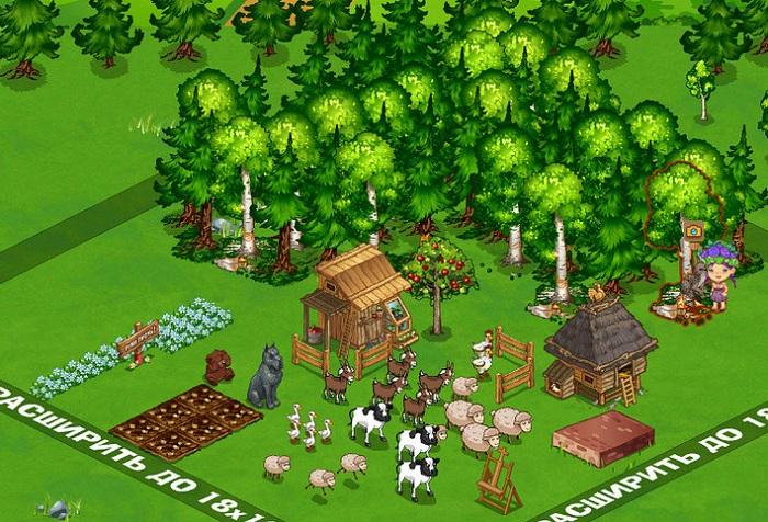 Ферма в Запорожье